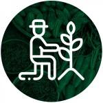 Group logo of Female Farmers & Entrepreneurs